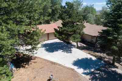 Carson City Single Family Home For Sale: 3459 Alpine View Court