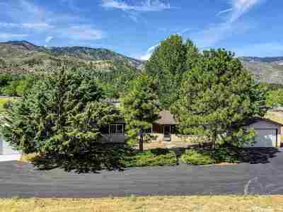 Washoe County Single Family Home New: 7465 Franktown Road