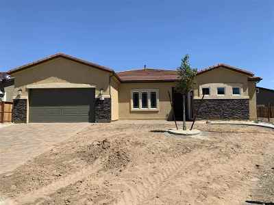 Washoe County Single Family Home New: 217 Gadsden Ct