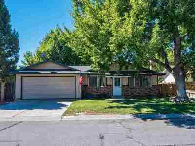 Carson City Single Family Home New: 601 Pat Lane
