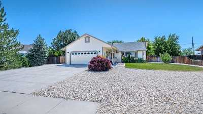 Washoe County Single Family Home New: 230 Date Palm #Date Pal