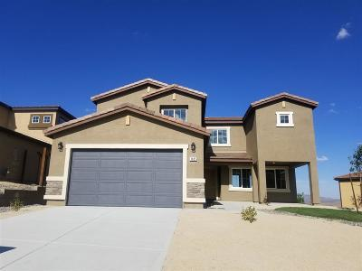 Washoe County Single Family Home New: 1825 Dream Catcher Ct.