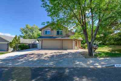 Washoe County Single Family Home New: 6624 Enchanted Valley Drive