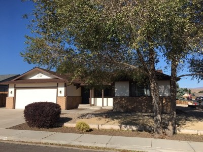 Fernley Single Family Home New: 675 Palomino