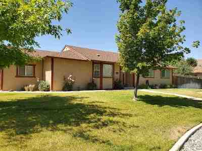 Washoe County Single Family Home New: 17530 Blackbird Drive