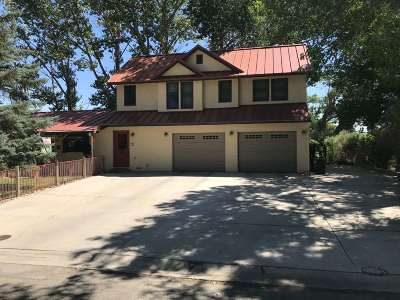 Yerington NV Single Family Home New: $389,000