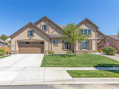 Washoe County Single Family Home New: 7056 Pilot Drive