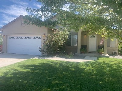 Fernley Single Family Home New: 1306 Turf Ct