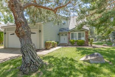 Washoe County Single Family Home New: 820 Blue Falls