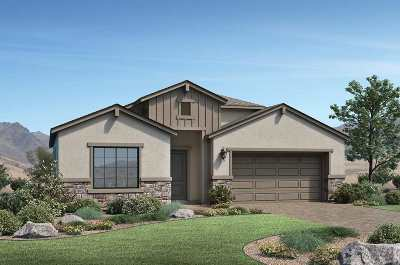 Washoe County Single Family Home New: 2511 Titanium Crest #Homesite