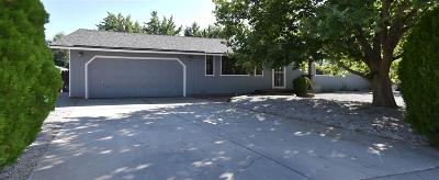 Washoe County Single Family Home New: 60 McLemore Ct