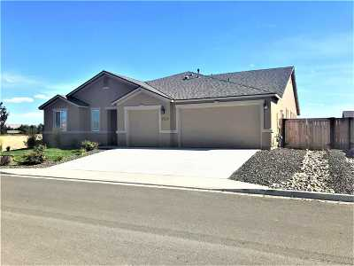 Washoe County Single Family Home New: 700 Treasure City