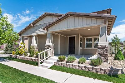 Washoe County Single Family Home New: 1741 Emerald Bay Drive