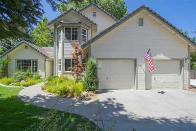 Carson City Single Family Home For Sale: 3660 Lakeview Rd