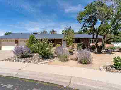 Reno Single Family Home New: 525 Harbin Lane