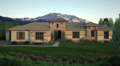 Reno Single Family Home New: 14705 Toulouse