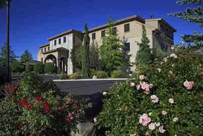 Carson City Condo/Townhouse For Sale: 3480 Gs Richards Blvd #301