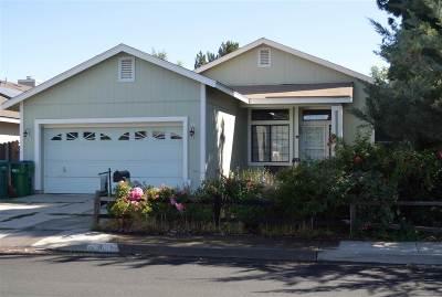Sparks Single Family Home New: 1015 Sunnybrook Lane