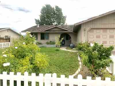 Gardnerville Single Family Home For Sale: 1377 Mary Jo