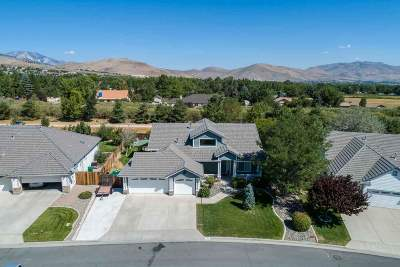 Carson City Single Family Home For Sale: 772 Norfolk Drive