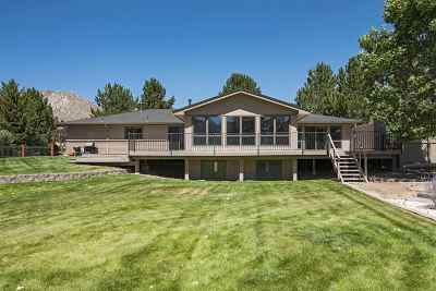 Carson City Single Family Home For Sale: 3360 Alpine View Court