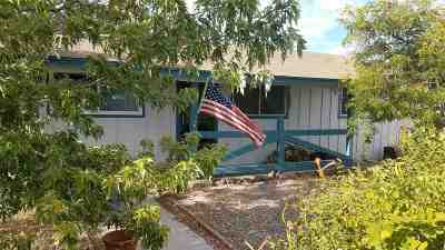 Fernley Single Family Home For Sale: 120 E Cedar