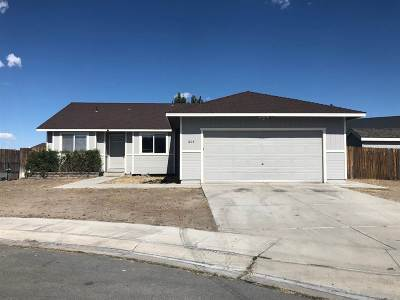 Fernley Single Family Home For Sale: 605 Tamsen Rd