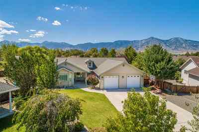 Minden Single Family Home Price Reduced: 2850 Hot Springs Rd