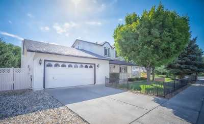 Carson City Single Family Home For Sale: 2995 Halleck Dr.