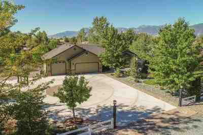 Minden Single Family Home For Sale: 1333 Jackie Ln