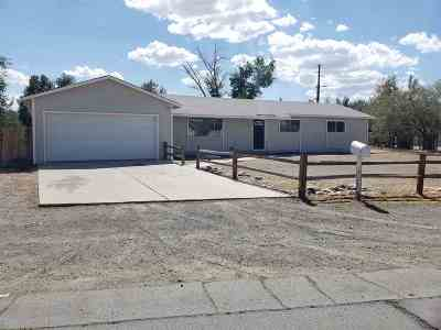 Fernley Single Family Home For Sale: 155 Sandia Drive