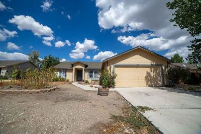 Fernley Single Family Home For Sale: 508 Darren Way
