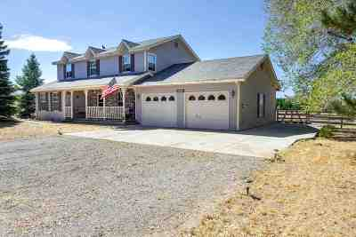 Gardnerville Single Family Home For Sale: 1320 Tamzy Court