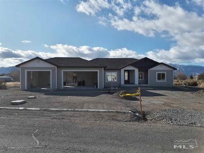 Gardnerville Single Family Home For Sale: 694 Shetland Circle