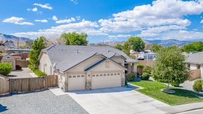 Fernley Single Family Home For Sale: 916 Brigit Cr