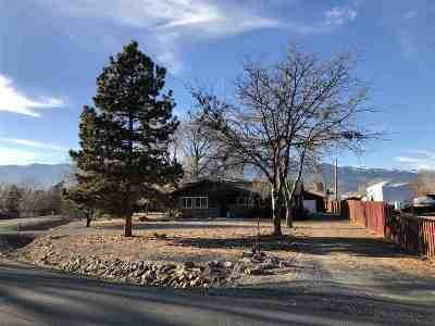 Washoe Valley Single Family Home New: 400 Flicker