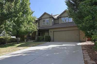 Reno Single Family Home For Sale: 16145 Galena Meadows Drive