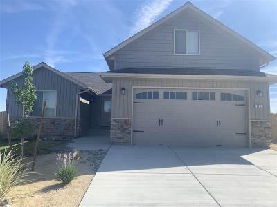 Fernley Single Family Home For Sale: 225 Juniper Peak