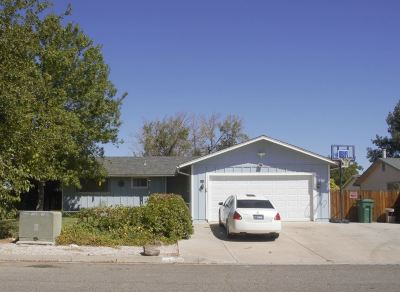 Fernley Single Family Home For Sale: 410 Appaloosa Way