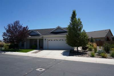 Gardnerville Single Family Home New: 771 Ellies Way