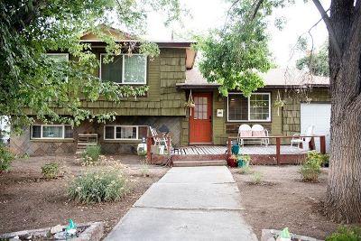 Reno Single Family Home New: 3460 Greta