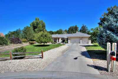 Fernley Single Family Home New: 202 Quail Run Rd