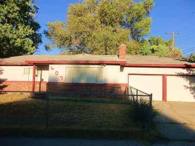 Carson City Single Family Home New: 407 S Richmond