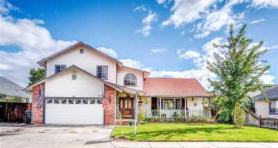Gardnerville Single Family Home New: 1447 Patricia Drive