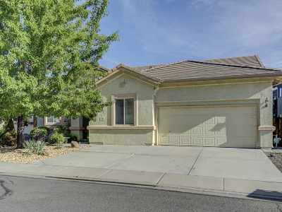 Reno Single Family Home New: 90 River Front Drive