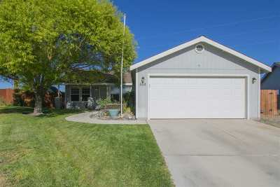 Fernley Single Family Home New: 553 Spur Court