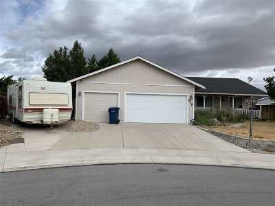 Fernley Single Family Home New: 810 Brittany