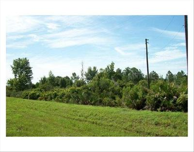 Residential Lots & Land For Sale: 0 E Irlo Bronson Hwy #Lots 2,