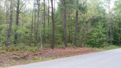 Chesterfield VA Residential Lots & Land For Sale: $299,900