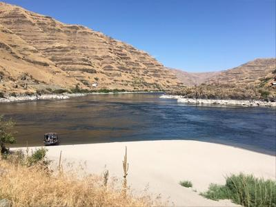 Residential Lots & Land Sale Pending: Parcel #1 Snake River Road